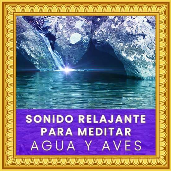 Sonido relajante de Agua y Aves para meditar y respirar