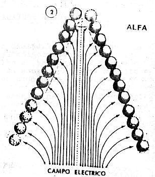 Línea Alfa transformándose en ANALFA