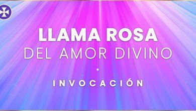 Photo of Invocación de la Llama Rosa del Amor Divino | Decreto